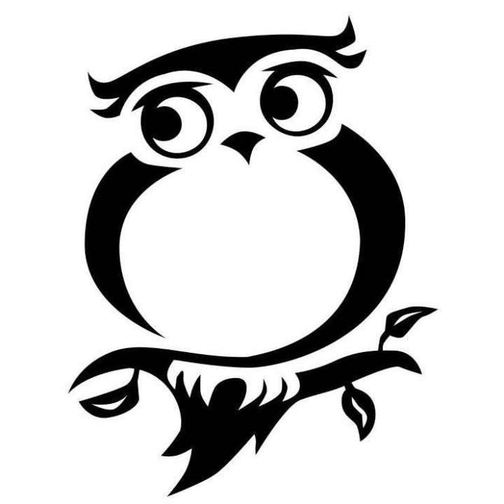 Baikush – The wisdom of a very stylish owl